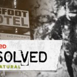 What is Bigfoot - Theories to Ponder Over