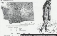 What is Bigfoot - Theories to Ponder Over+